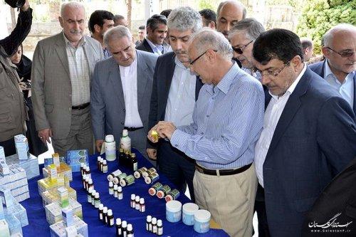 بازدید استاندار و معاون رئیس جمهور از شرکت دانش بنیان تولید کننده داروهای گیاهی